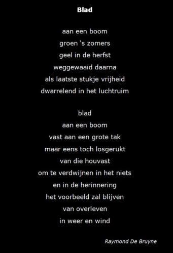 Raymond De Bruyne Blad