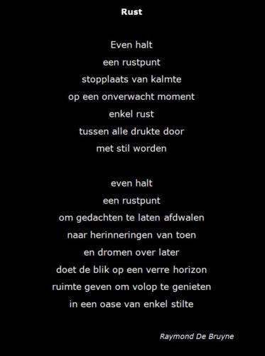 Raymond De Bruyne Rust